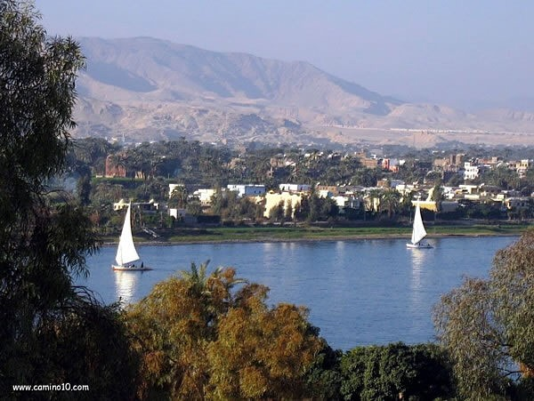 Feluccas River Nile