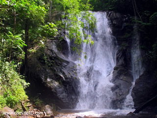 Waterfall Jungle Trekking Thailand
