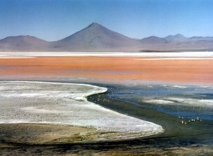Laguna Colorada in Bolivien